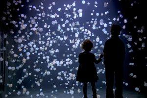 Children watching jellyfish at Vancouver Aquarium